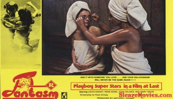 Fantasm aka World of Sexual Fantasy (1976)