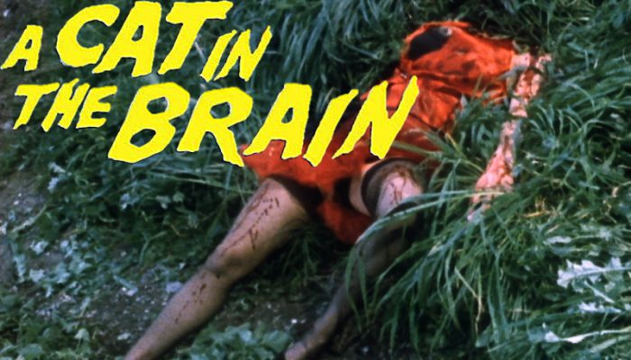 Nightmare Concert aka Cat in the Brain (1990) watch online