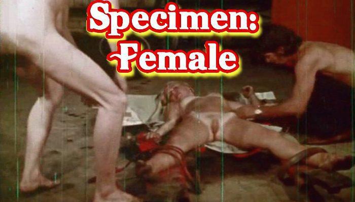 Specimen: Female (1971) watch online