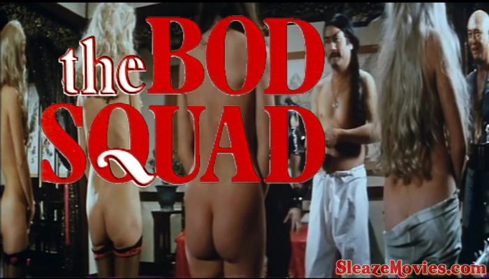 The Bod Squad (1974) watch online